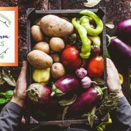 Nurney Farm Organics Promo Video